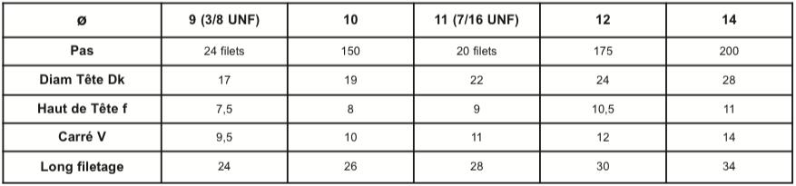 TFCC - Tête fraisée collet carré 12.9 brut